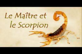 CONTE : Le scorpion et le Maître zen