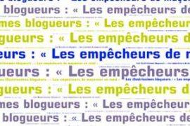 """""""LA SŒUR EST UN FRÈRE COMME LES AUTRES"""" – Franck Fouqueray"""