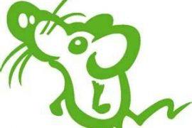 La souris verte décryptée par un alchimiste
