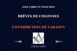 BRÊVES DE COLONNES – CONTRIBUTION DE VABADUS