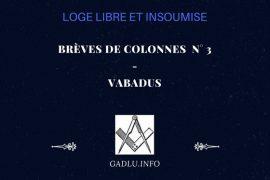 BRÈVES DE COLONNES N° 3 – CONTRIBUTION DE VABADUS