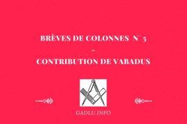BRÈVES DE COLONNES N° 5 – CONTRIBUTION DE VABADUS