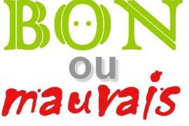 LE BON OU LE MAUVAIS FRANC-MAÇON ?
