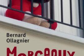 MORCEAUX D'UNE VIE CONFINÉE, Vers une Nouvelle harmonie fraternelle, républicaine et démocratique